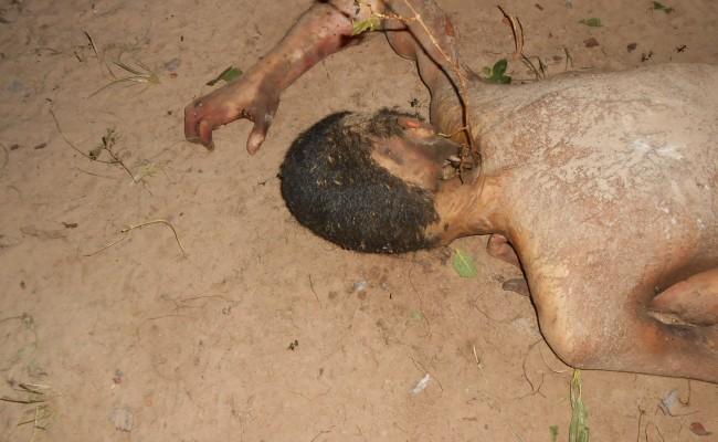 Urubus já consumiam o cadáver quando foi encontrado